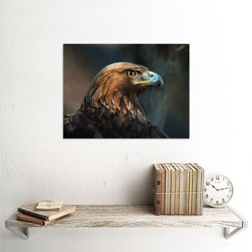 ANIMAL PHOTO BIRD PREY GOLDEN EAGLE HEAD 12 X 16 INCH ART PRINT POSTER HP2065