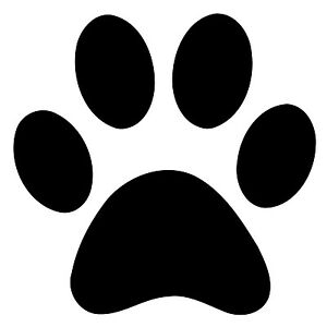 50x-100mm-100mm-white-paw-print-stickers