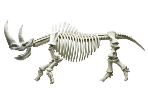"Rement Re-ment Miniatures Pose Skeleton /""Rhinoceros/"""