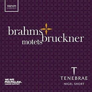 Tenebrae-Brahms-and-Bruckner-Choral-Motets-CD