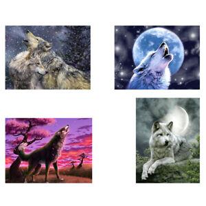 Am-HD-KF-DV-KE-Paint-By-Number-Kit-DIY-Acrylic-Oil-Painting-On-Canvas-Wolf