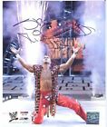 SHAWN MICHAELS WWE 8X10 AUTOGRAPHED PHOTO PSA DNA WITH BONUS 12 CARDS