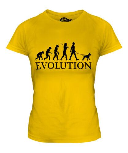 AMERICAN PIT BULL TERRIER EVOLUTION OF MAN LADIES T-SHIRT TEE TOP GIFT