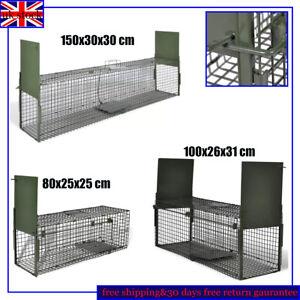 1/2 Door Large Animal Trap Life Catch Cage Bait Cat Rabbit Raccoon Fox Pet Pigs