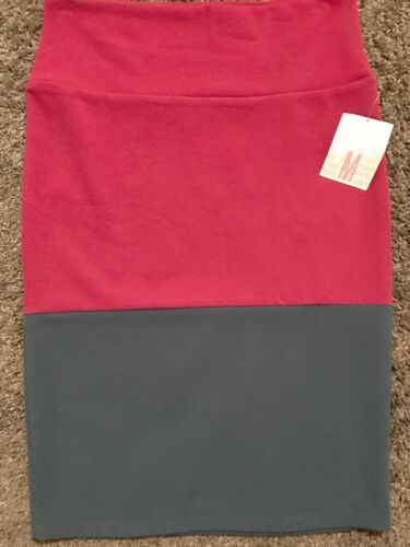 Lularoe Immerso Nwt Slate Stripe M Skirt Blue Magenta Cassie Colorblock Sz rSPYHZWrwq