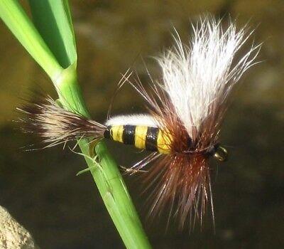 GILCHRIST FLIEGEN.Trockenfliegen Bee Humphy. 4 Stück von einer Größe