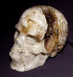 Lifelike-Gemstone-Skull-Skull-Tree-Leaves-Agate-5-84oz-2-1-16x1-5-8x1-5-16in