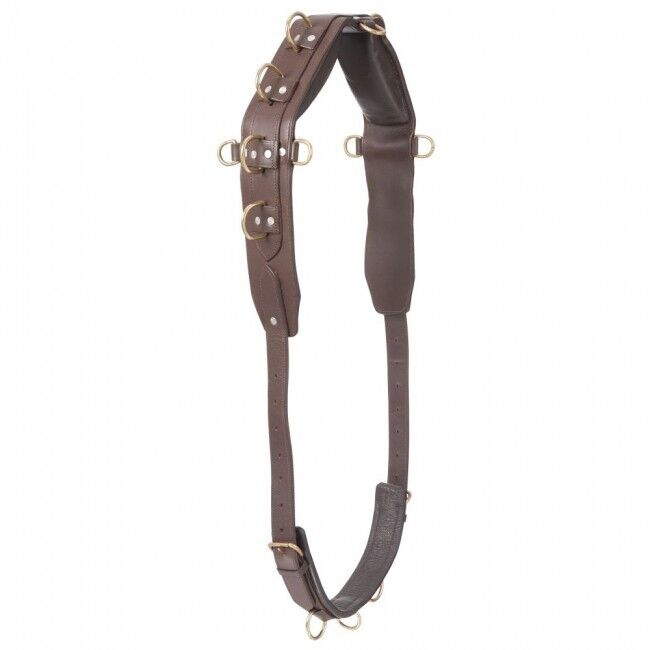 Performers 1st Choice Pro Heavy Marronee Leather Training Lunge Surcingle