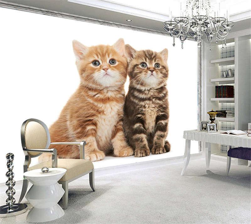 Braun British Shorthair Kittens Full Wall Mural Photo Wallpaper Print 3D Decal