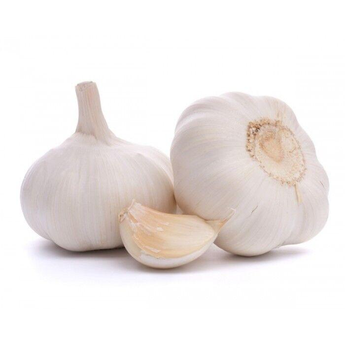 White Garlic Seeds * 10-Clove* / *Hardy Variety & Viable Seeds*UK SELLER!