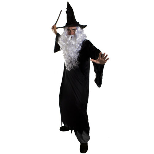DARK WIZARD COSTUME MENS HALLOWEEN FANCY DRESS ROBE HAT WIG BEARD WAND TV FILM