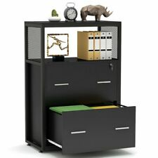 New Listing2drawer Lateral File Cabinet Storage Cabinet To Keep Paper Files For Home Office
