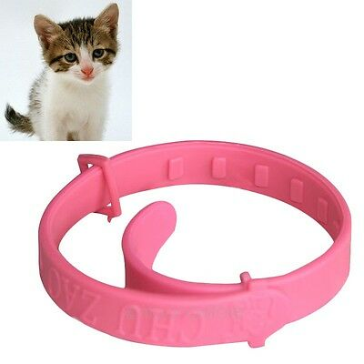 Fashion Flea Tick Collar Adjustable Neck Ring Remedy For Cat Pet Protection