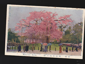 Maruyama-Kyoto-Japan-unused-vintage-postcard-Beautiful-Pink-Trees