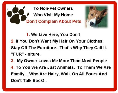 Magnet Gift Card Idea Funny Dog Basenji House Rules Refrigerator