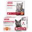 BEAPHAR-FIPROtec-SPOT-ON-CAT-DOG-FLEA-TICK-TREATMENT-Solution-S-M-L-XL-Fipronil thumbnail 13