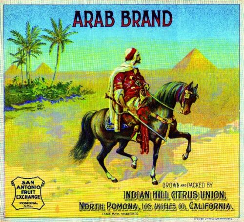 Pomona Arab Egyptian Egypt Pyramids Orange Citrus Fruit Crate Label Art Print