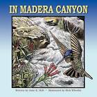 In Madera Canyon by Jane E Holt (Paperback / softback, 2009)