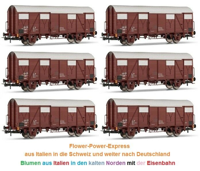 Rivarossi HR 6225-00 - h0-dc - Covered Freight Wagon Set 6 pieces GS FS ep4 5 Brown