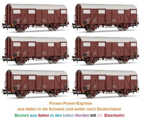 Festa carri merci Set 6 pezzi GS FS ep4//5 Marrone h0-dc RIVAROSSI HR 6225-00