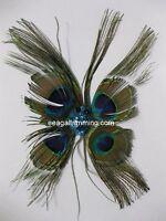 Peacock Feather Pad - Pads; Headband/hats/bridal/craft/dress