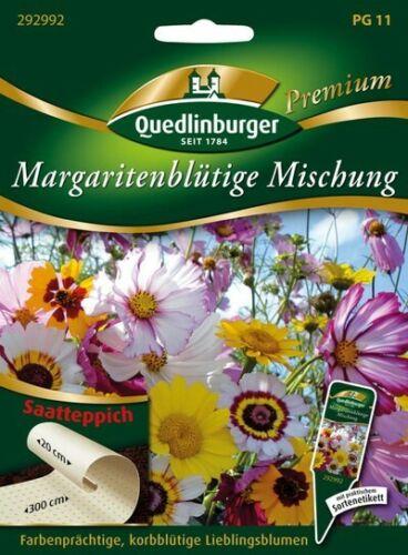 """Blumenmischung /""""Margaritenblütige/"""" Saatteppich Quedlinburger Premium Saatgut"""