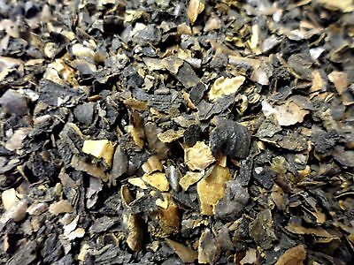 Black Walnut Juglans Nigra Loose Whole Herb 50g