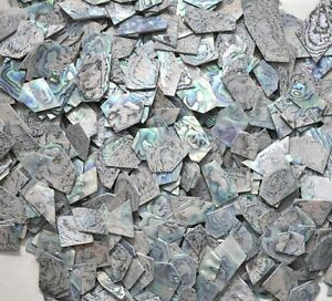 LARGE PIECES 1oz green abalone shell blanks inlay material thickness 1.5mm