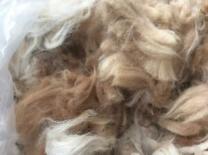 100g-of-Alpaca-fleece-2nd-mix-natural-for-padding-dolls-cushions-other-crafts