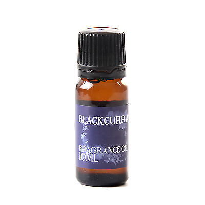 Mystic Moments   Blackcurrant Fragrance Oil - 10ml (FO10BLAC)