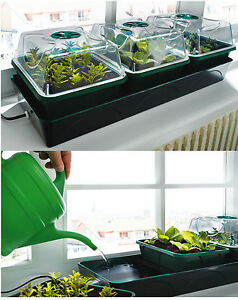 Biogreen-Heated-Cultivation-Set-Hollandia-Sowing-Plant-Cultivation-Station