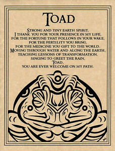Poster-TOAD-PRAYER-ANIMAL-SPIRIT-Pagan-Wicca-Book-of-Shadows-Guide-Page-8-1-2x11