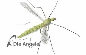 J:son Schweden, Schnake, Cranefly, Olive Green, 30 mm Länge