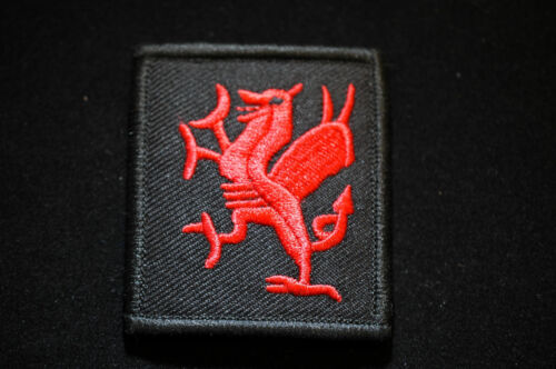 Royal Welsh Fusilers Velcro Patch no513b British Army