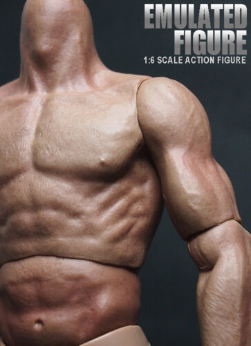 ZC Toy 1//6 Scale Muscular Nude Figure body TTM19 fit Wolverine Head ❶❶USA❶❶