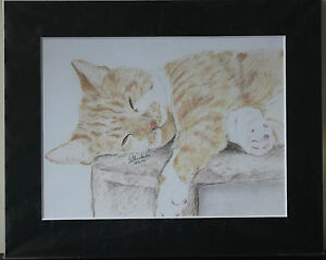 Cat-and-Kitten-Prints-6x8-inch-8x10-inch-11x14-inch-and-some-Original-Drawings