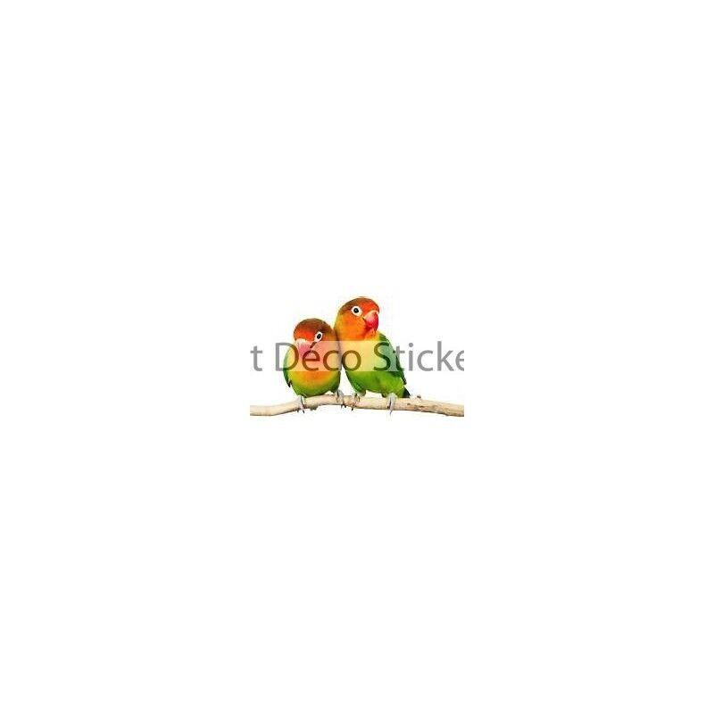 Aufkleber Tier Papageien 120x67cm Ref 055
