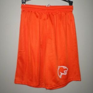 SYLVANIA-SOUTHVIEW-High-School-small-athletic-shorts-Cougars-logo-Ohio-polyester