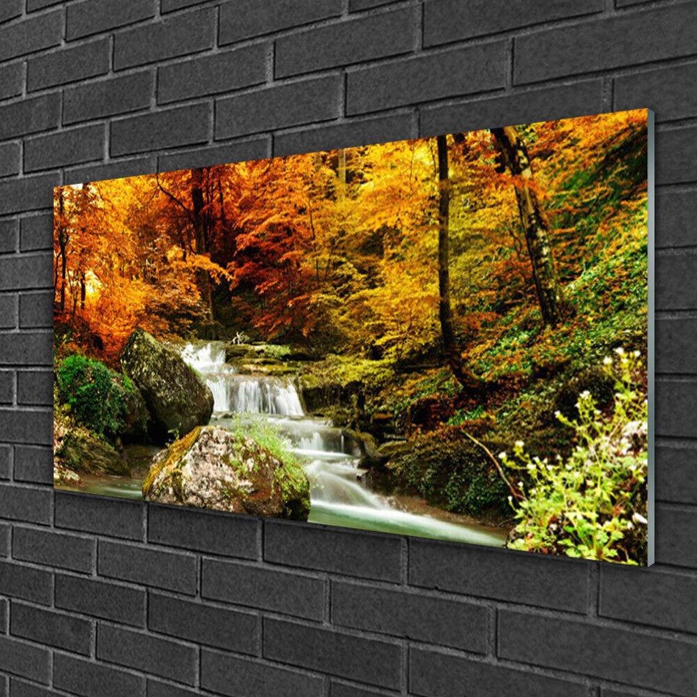 Image sur verre Tableau Impression 100x50 Nature Chute D'eau Forêt