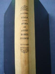 ESTIMO-RURALE-SCALA-STIMA-DEI-COLTIVATI-DEI-BOSCHI-E-DEI-FABBRICATI-NAPOLI-1905