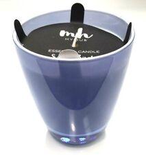 My Hub Homewares Decorator Fragrant Glass Essential Candle Silver Birch