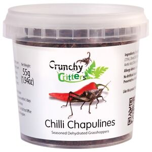 Edible Insects Edible Bugs Bush Tucker Chilli Chapulines 55g ...