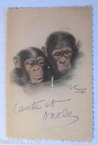 034-Affen-Schimpansen-034-1931-Exposition-Coloniale-Internationale-de-Paris-28239