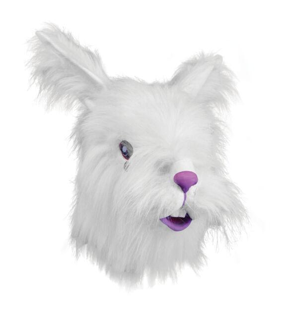 10x Funny Jumbo White Fake Rabbit Teeth Buck Teeth Bunny Fancy Dress Prop