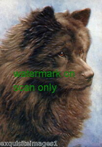 Vintage Art Black Chow Chow Puppy Dog Profile New Large Note Cards