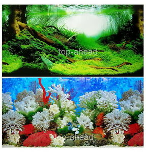 Aquarium Fish Tank Background H 20