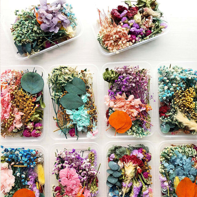 Dried Flower Plants Epoxy Resin Filling Scented Candle Aromatherapy Craft Art