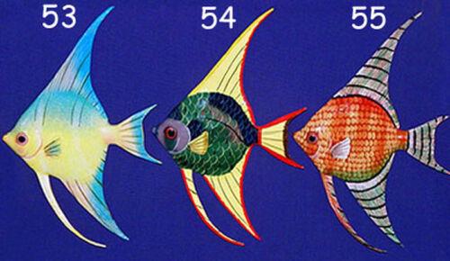 "54 Tropical Fish Wall Plaque 6/""X4/""~ Nautical Beach Sealife Decor~ Selections!"