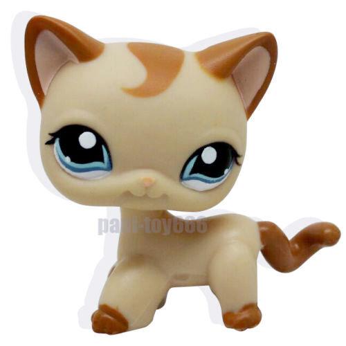 Littlest Pet Shop RARE Brown Short Hair Cat Kitty Blue Eyes LPS Toy #1024