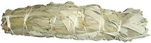X-Large-White-Sage-Smudge-Stick-8-034-Jumbo-House-Cleansing-Negative-Energy